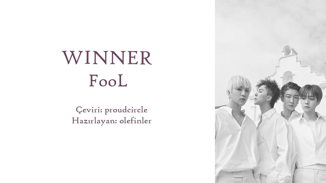 Winner Fool