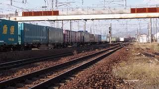 DF200形貨物列車@五稜郭駅発車(2020.11.08)