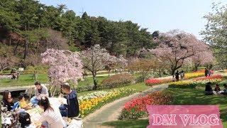 Vlog 187 Makan Di Bawah Pohon Sakura