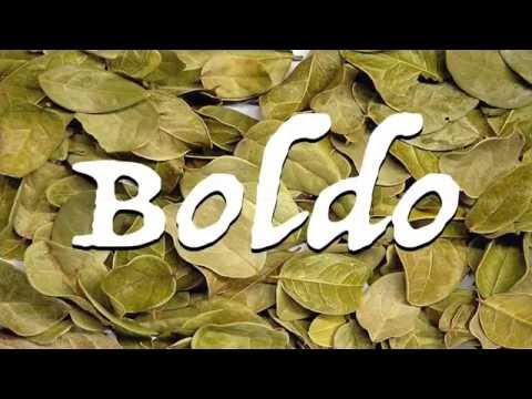 Benefits of Boldo ; liver diseases