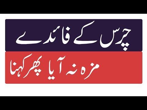 Shocking benefits of charas | charas ke side effects In Urdu | Phatichar Tv thumbnail