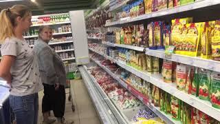 В Мариупольском супермаркете обнаружили крысу