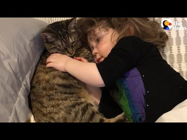 Cat and Little Girl Best Friends Have The Most Special Relationships | The Dodo
