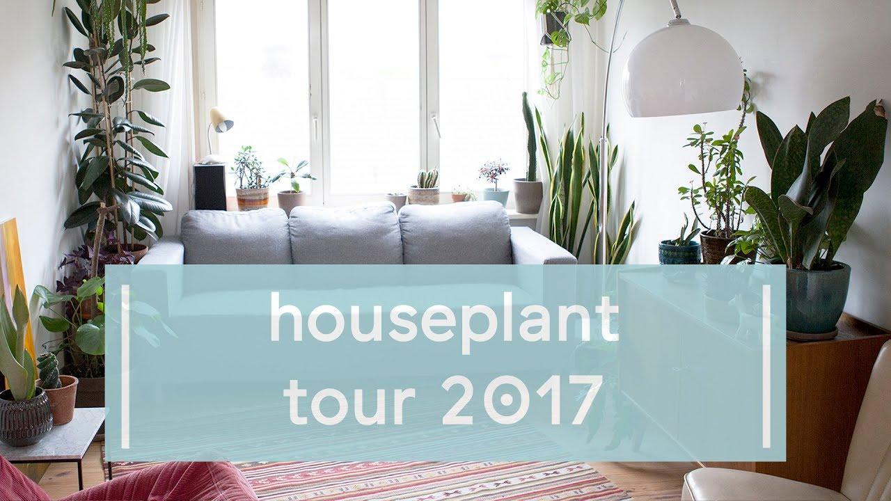 House Plant Tour Winter 2018 ♡ - Super Groene Vingers - YouTube
