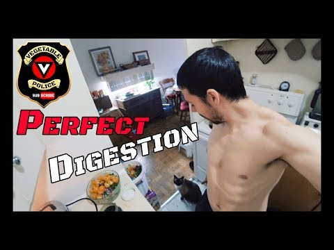 Constipation Cure: 4 Tips to Perfect Digestion. Overcome IBS / IBD Colitis / Crohns