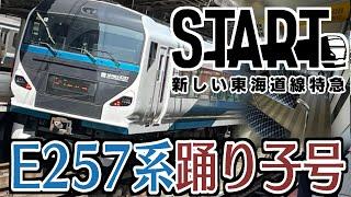 【新車へ統一】新しい東海道線特急!E257系2000番台踊り子13号に乗車!晴れ空と桜と海の車窓