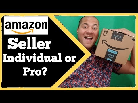 Amazon Seller Account Individual Or Professional