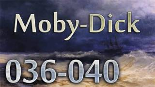 Moby Dick, The Whale - Audiobook 036-040