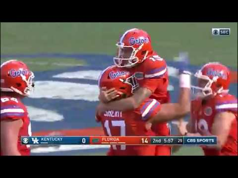 2016 Florida Gators vs Kentucky Football Highlights [HD]