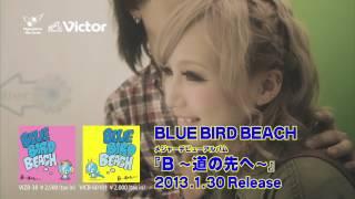 BLUE BIRD BEACH - 道の先へ ~信じる力は明日を変える~