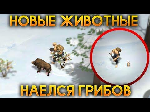 Стратегия игры в игровой слот Сафари Хит. Играть казино бесплатно без регистрации 777.из YouTube · Длительность: 6 мин59 с