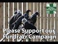 Fundrazr Campaign Video
