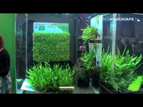 Aquarium ideas from InterZoo 2012 (pt. 26) - SonGrow Epaqmat