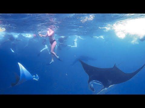 Mantas And Mermaids - Snorkelling Nusa Penida