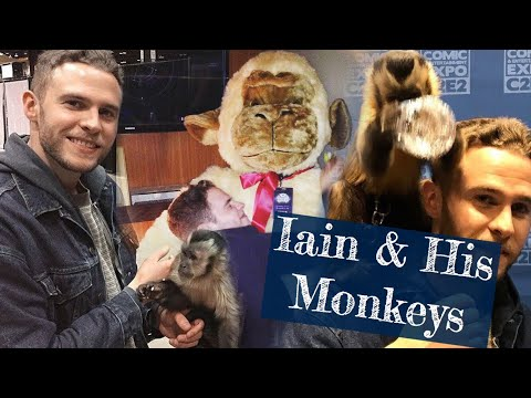 Iain de Caestecker and his monkey obsession for 2 minutes straight