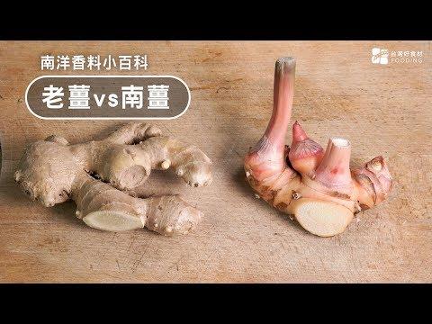 【南洋料理小百科】老薑vs南薑!電鍋煮南薑雞湯,提高免疫力,預防感冒!Chicken Soup wi