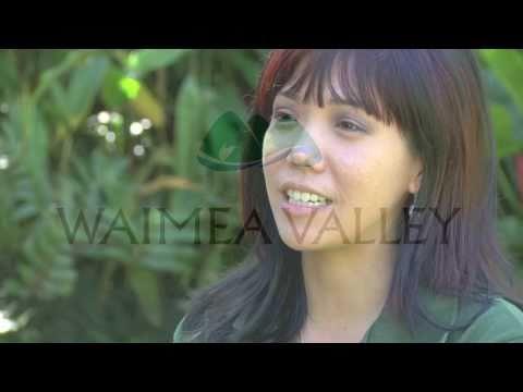 Hawaii Cultural Native Footsteps Walk at Waimea Valley on Oahu