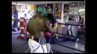 James Toney sparring