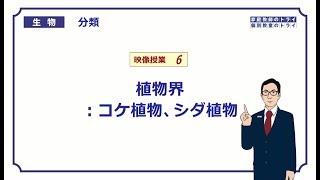 【高校生物】 分類6 植物界:コケ植物、シダ植物(24分)