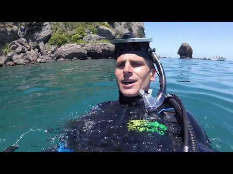 Crayfish Diving - Coromandel Peninsula
