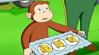 Curious George 🐵Surprise Quints 🐵Kids Cartoon 🐵Kids Movies 🐵Videos for Kids