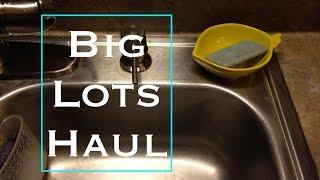 Big Lots Haul