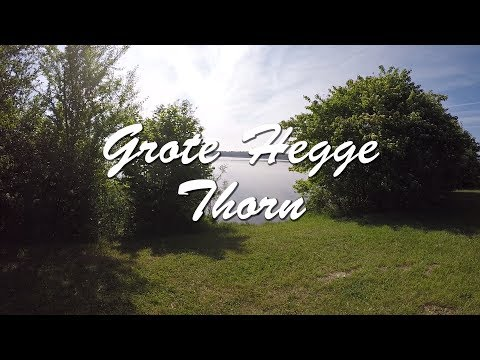 Grote Hegge  Thorn