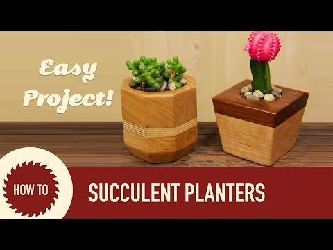 How to Make Succulent & Cactus Planters