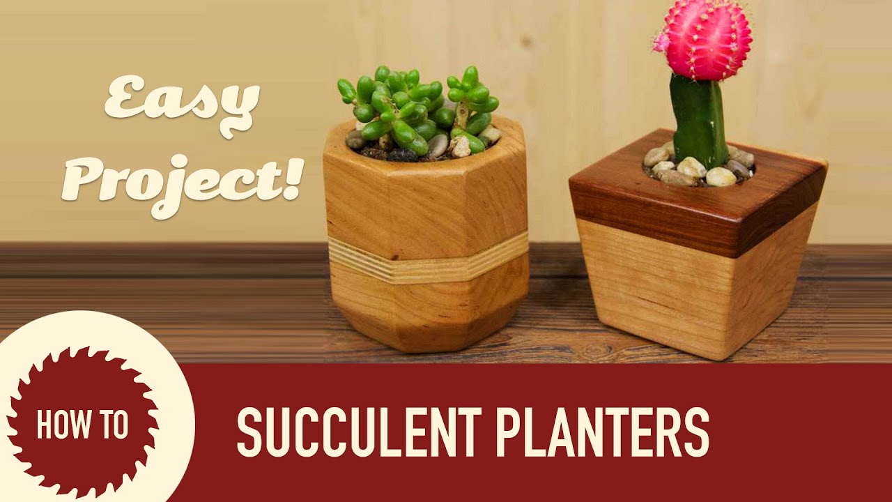 How to make succulent cactus planters youtube for Wooden cactus planter