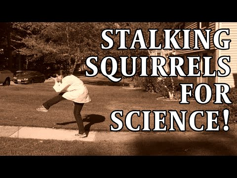 Stalking Squirrels For Science! - A Silent Film