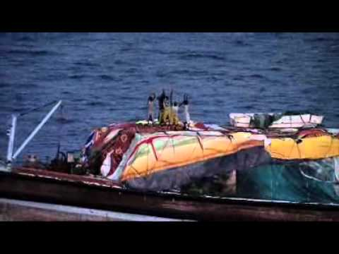 Dutch Navy Frees Hijacked Ship