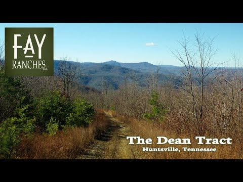 Tennessee Mountain Property For Sale | The Dean Tract | Huntsville, TN