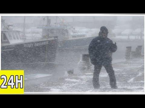 L'océan gelé dans le massachusetts? incroyable! (vidéo)   brèves   alterinfonet.org agence de press