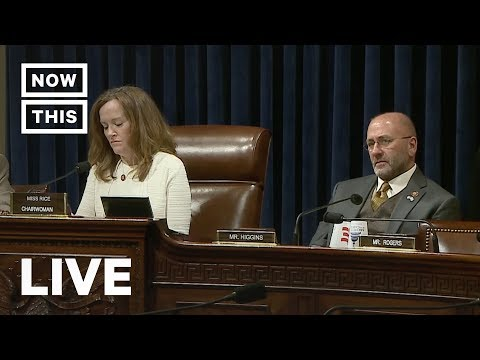 House Hearing Digs Into Trump's Troops at the Border   NowThis