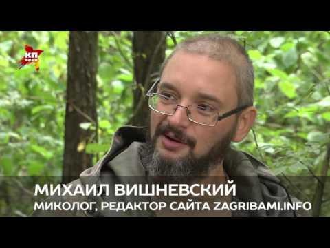 Микологи Москвы — 121 врач, 1351 отзыв, цены, рейтинг