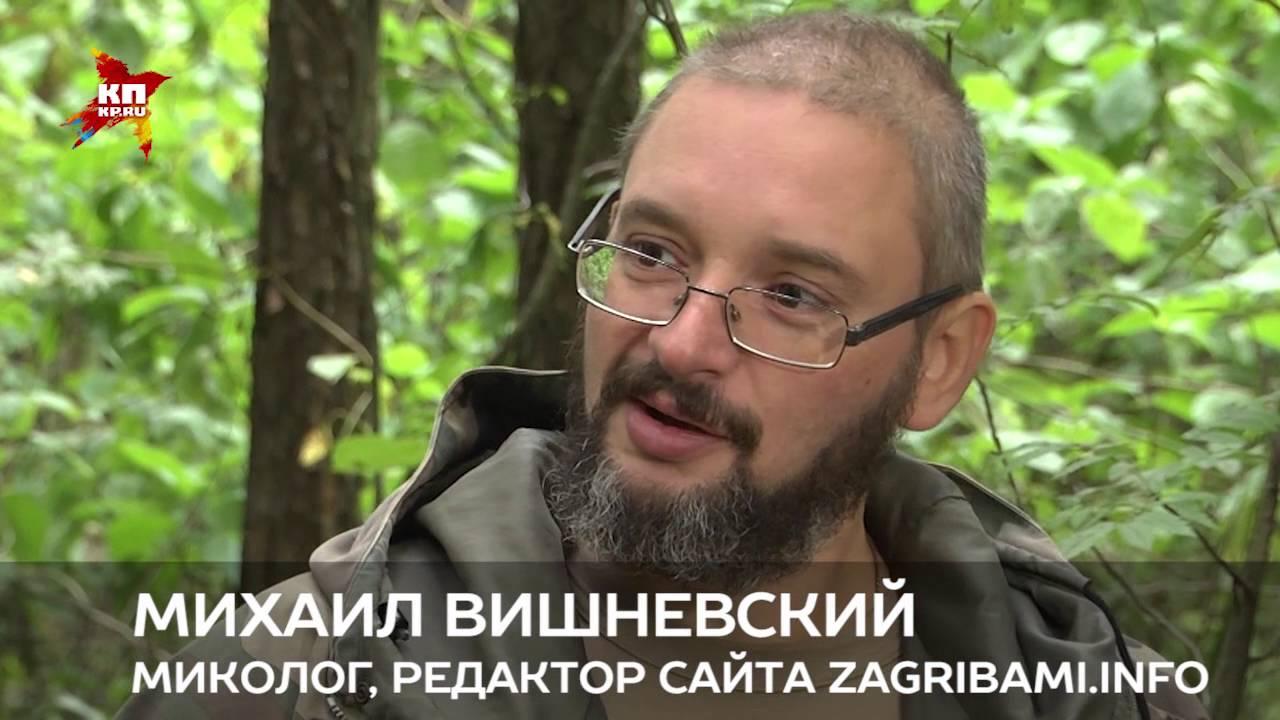 Грибы в лесу: срезать или выкручивать? - YouTube