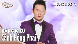 Bằng Kiều | Cánh Hồng Phai | Thúy Nga Music Box #3