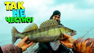 ЛОВЛЯ ЖИРНОГО СУДАКА СУДАК НА ДЖИГ рыбалка на судака