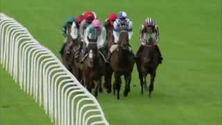 2014 QIPCO Champions Stakes - Noble Mission