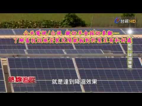 家畜禽養殖場/畜牧場屋頂 來安裝太陽能光電設備 太陽光電設置降低溫度可發電