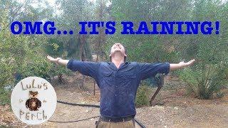 Rainwater Harvesting in the Desert | Greening the Desert