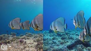 How-To Tutorial: Rotfilter oder Videolicht nutzen? Die Unterschiede!