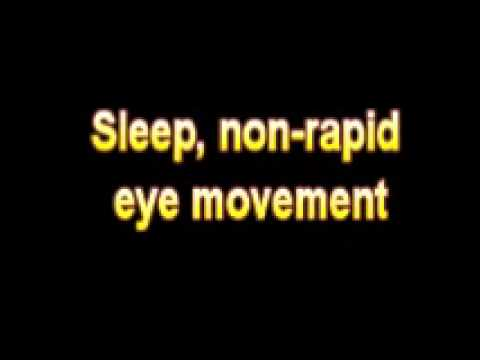 What Is The Definition Of Sleep, non rapid eye movement Medical School Terminology Dictionary