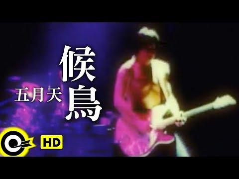 五月天 Mayday【候鳥 Migratory bird】Official Music Video