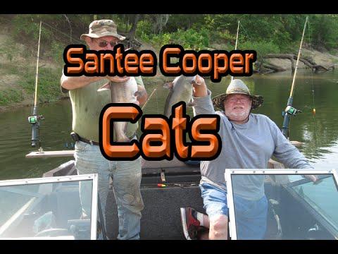 Santee Cooper Catfish Show (day 2)