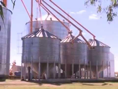 Fabrica de balanceados y harina de trigo cooperativa be - Molino de trigo ...