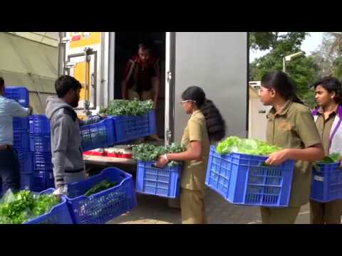Madhavi Farms: Largest commercial Aquaponic farm in India -