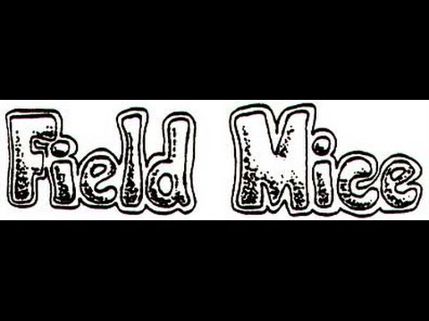 THE FIELD MICE ~ YOURE TOAST mp3