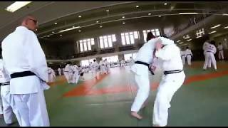 Swiss Judo Team | Japan 2017 (2)