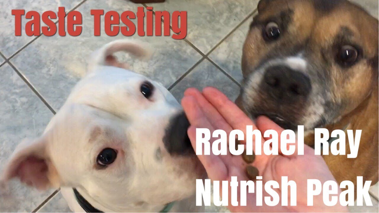 Taste Testing Rachael Ray Nutrish Peak Dog Food Fur Babies Review